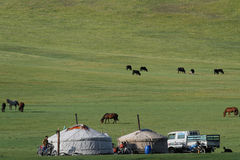 Yurts in the steppe Royalty Free Stock Photos