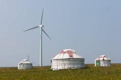 Yurts sul prato Fotografie Stock Libere da Diritti
