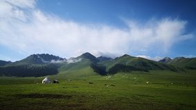Yurts sulla prateria del cielo immagini stock