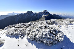 Yushan national park Mt. jady main peak and east peak. With snow in winter Royalty Free Stock Photos