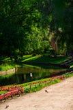 Yusupov trädgårdar Royaltyfri Bild