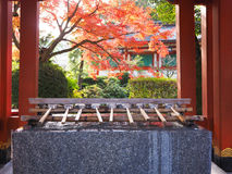 Yutoku Inari Shrine. Holy water well in front of the Yutoku Inari Shrine with color change of autumn leave in Saga prefecture, Japan Stock Photo