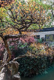 Yuyuan garden shanghai china Royalty Free Stock Photography