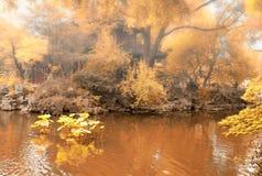 Yuyuan Gardens Stock Photography