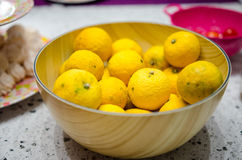 Yuzu lemons in a bowl Royalty Free Stock Photo