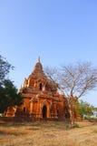 Ywa Haung Gyi w Bagan Obraz Royalty Free