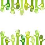 Żywa zieleń ilustracji