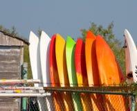 Żywi Surfboards Wykładający W górę Pionowo Outdoors Obraz Stock