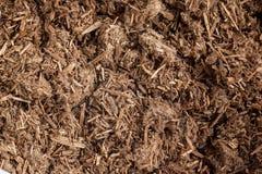 Żywiczne granule lub proszek Agarwood (Aquilaria crassna) Zdjęcie Stock