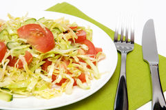 żywienioniowy lunch Obraz Stock
