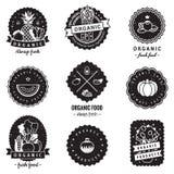 Żywność organiczna odznak rocznika wektoru set Modniś i retro styl Doskonalić dla twój biznesu Obraz Stock