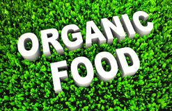 Żywność Organiczna Zdjęcie Royalty Free