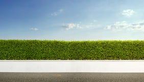 Żywopłotu ogrodzenie zdjęcie royalty free