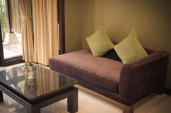 Żywy izbowy kanapa rocznik Obraz Royalty Free