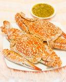 żywy koloru krab Zdjęcie Royalty Free