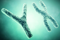 YX Chromosome in the foreground, a scientific concept. 3d illustration Royalty Free Stock Photography