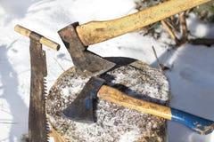 Yxa Apparat för att hugga av träd Arkivbild