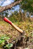 Yxa i stubben i trädgården royaltyfri foto