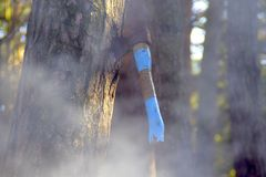 Yxa som snidas i trä Royaltyfri Bild