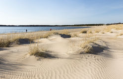 Yyteri beach in spring Stock Images