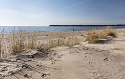 Yyteri plaża w wiośnie Fotografia Stock