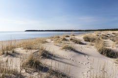 Yyteri plaża w wiośnie Zdjęcie Stock
