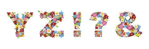 YZ ! ? et fleurs de source Images libres de droits