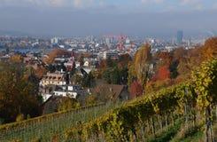 Zà ¼ bogactwo: Burghölzli kliniki wzgórze, dokąd obrazy stock