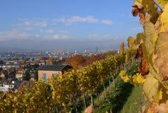 Zà ¼ bogactwo: Widok miasteczko od Burghölzli kliniki wygrany zdjęcie stock