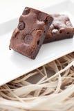 Zähe selbst gemachte Schokoladenkuchen Fudgy Lizenzfreies Stockbild