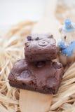 Zäher Fudge-selbst gemachte Schokoladenkuchen Stockfotografie
