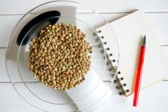 Zählung der Fettmenge, der Kohlenhydrate, der Kalorien und der Proteine in der Nahrung Linsensamen auf Küchenskalen lizenzfreie stockfotos