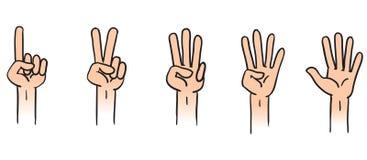 Zählung der Hände Stockfoto