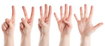 Zählung der Hände Stockfotografie