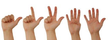 Zählung der Hände Lizenzfreie Stockfotografie