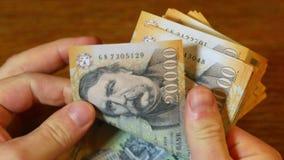 Zählung des Geldes, ungarische Forint stock video footage