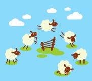 Zählung Schafe, um zu schlafen Konzept Stockfotos