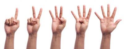 Zählungshandzeichen mit einen bis fünf Fingern lokalisiert Stockfoto