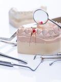 Zähne formen und grundlegende zahnmedizinische Werkzeuge auf weißer Tabelle Stockbild