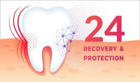 Zähne interessieren sich Plakat mit dem enormen gesunden Zahn im Gummi stock abbildung