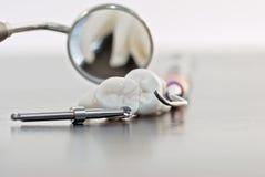 Zähne und zahnmedizinische Instrumente Lizenzfreie Stockfotos