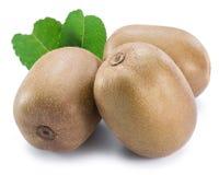 Złote kiwi owoc lub Chińscy agresty odizolowywający na białym tle fotografia royalty free
