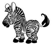 Zèbre noir et blanc Image libre de droits