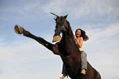 Züchtung von Stallion und Lachen des Mädchens Stockfotos