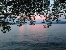Zürich am Abend Stockfoto