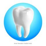 Ząb na błękitnym tle wektor Obraz Royalty Free