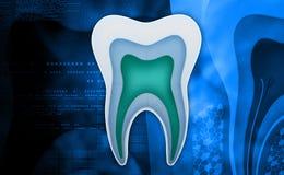 Ząb struktura royalty ilustracja