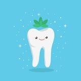 Ząb Z mennicą Obraz Royalty Free