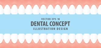 Zęby i dziąsło wśrodku widoku wirtualnego stylowego ilustracyjnego wektoru ilustracji