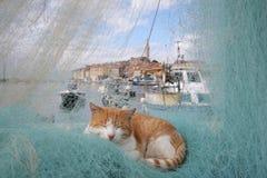 złapana sieć rybacka Zdjęcia Royalty Free